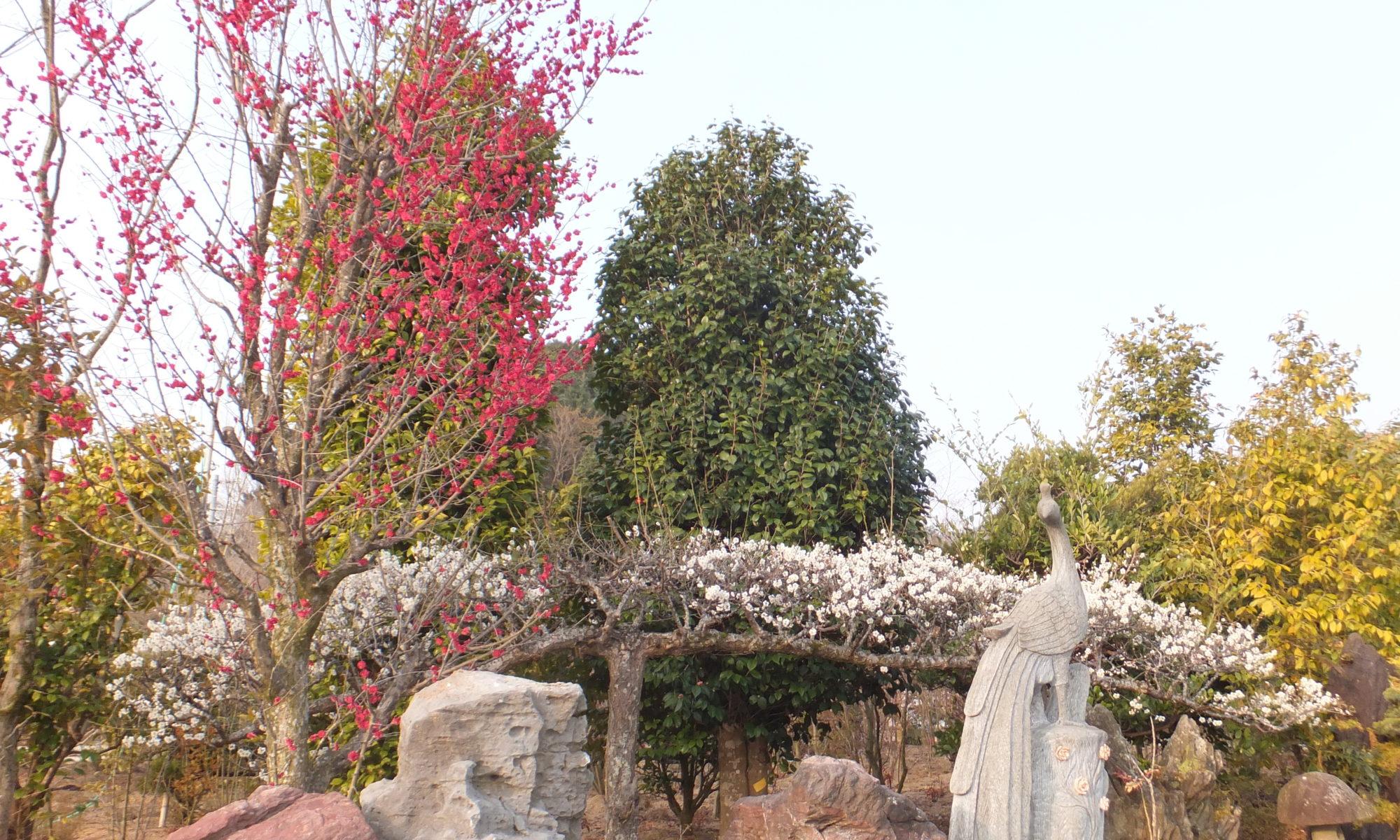 呉緑化センター 植木と造園のブログ